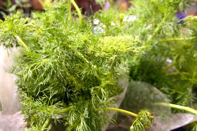 greens at reading terminal market